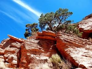 Roca sedimentaria en el Parque Nacional del Gran Cañón, Arizona
