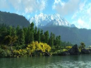Gran cantidad de árboles verdes junto a las montañas nevadas