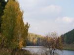 Árboles otoñales junto al agua