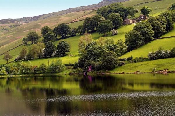 Casas en la ladera verde próximas al agua