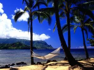 Hamaca entre dos palmeras de una bonita playa