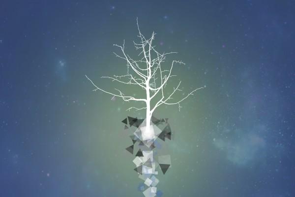 Figuras geométricas en el tronco del árbol