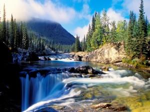 Vista del río y la cascada desde una roca