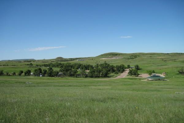 Una verde pradera