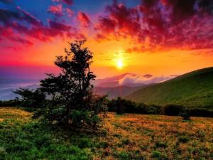 Postal: Un dorado amanecer iluminando las colinas