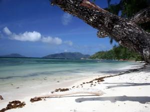 Postal: Una playa de arena blanca