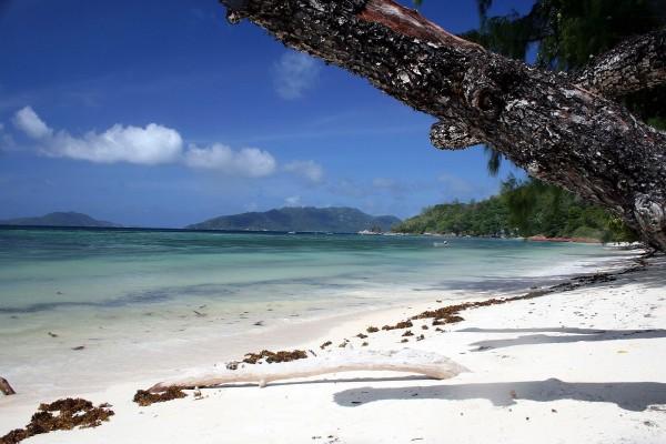 Una playa de arena blanca