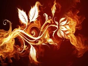 Planta de fuego