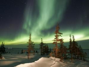 Postal: Aurora boreal iluminando el paisaje nevado