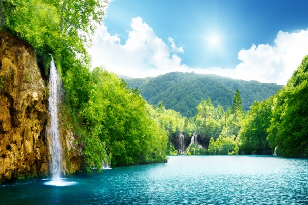 Varias cascadas entre los árboles