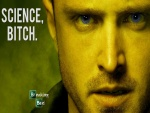 "Jesse Pinkman de Breakin Bad ""Science, bitch"""