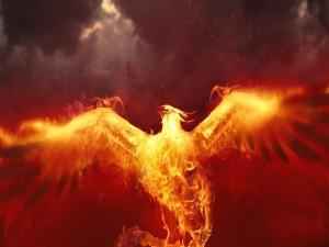 Postal: Fénix en llamas