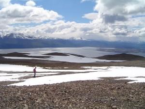 La bahía A. Brown vista desde el cerro Bandera (isla Navarino, Chile)