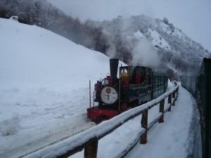 El Tren del Fin del Mundo en invierno (Provincia de Tierra del Fuego, Argentina)