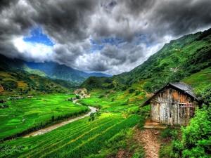 Río en un valle verde