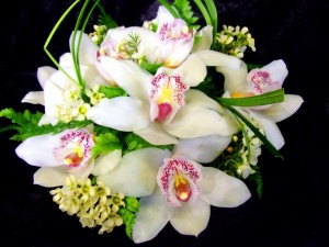 Postal: Ramo de orquídeas blancas