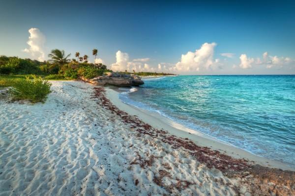 Playa exótica del Caribe mexicano