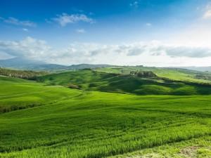 Paisaje natural con verdes prados, aire puro y paz espiritual