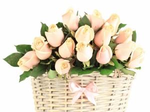 Postal: Cesta de mimbre con pimpollos de rosas