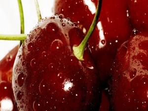 Cerezas rojas con gotitas de agua