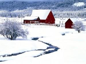 Postal: Edificios rojos en un terreno cubierto de nieve