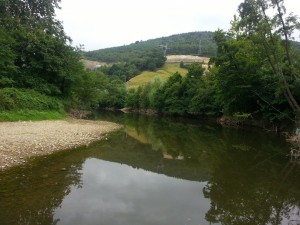 Orilla pedregosa de un río