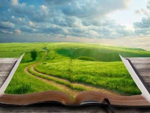 Paisaje verde sobre el libro