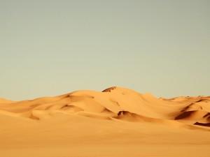 Postal: Dunas en el desierto