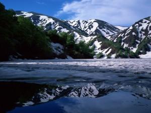 Postal: Montañas con árboles verdes y nieve