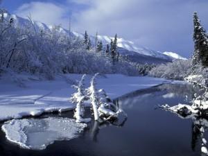 Nieve y hielo junto al río