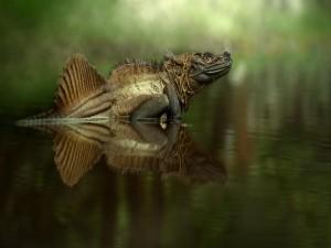 Postal: Gran iguana en el agua