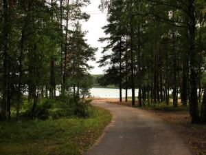 Postal: Camino hacía el río entre la arboleda
