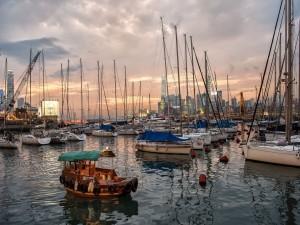 Barcos al amanecer en el puerto de Hong Kong
