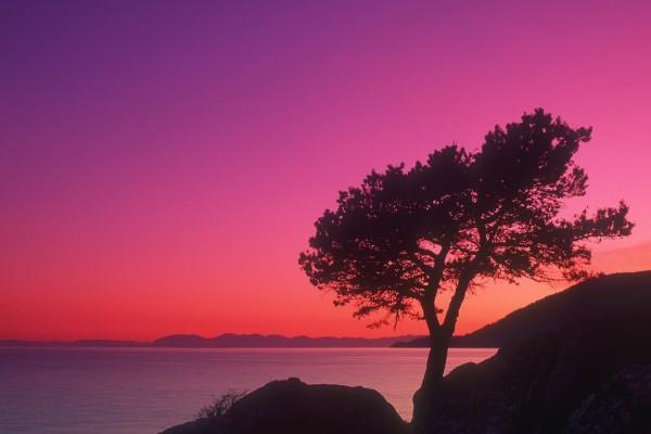 Los colores del crepúsculo