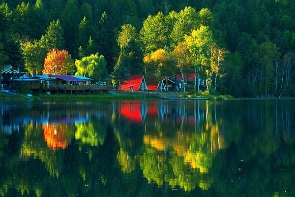 Arboleda y bellas casas se reflejan en el lago