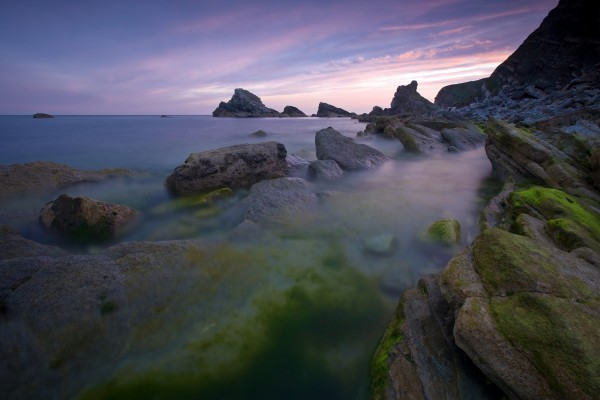 Rocas con musgo en la costa