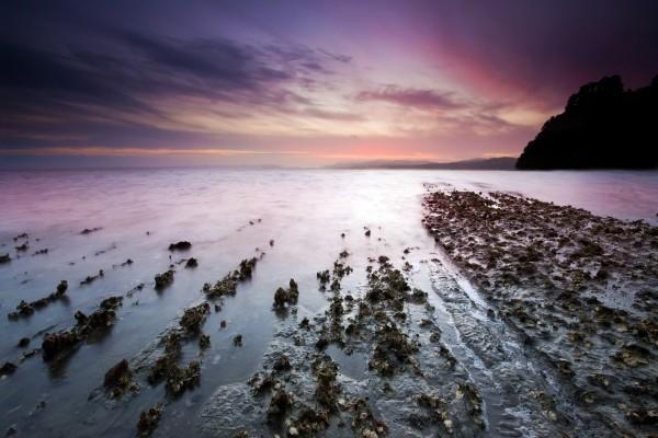 Piedras y barro en la orilla del mar