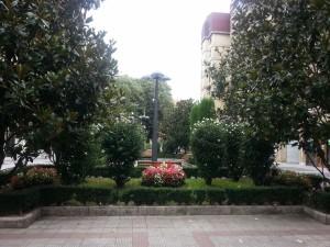 Flores y árboles junto a una farola