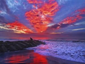 Postal: Un rojo amanecer en la playa