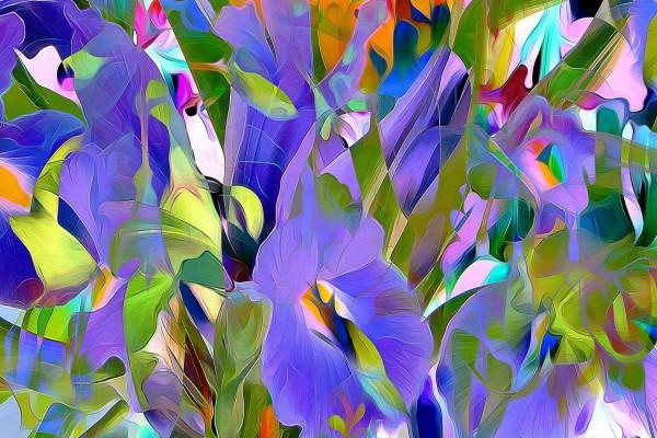 Flores abstractas de varios colores