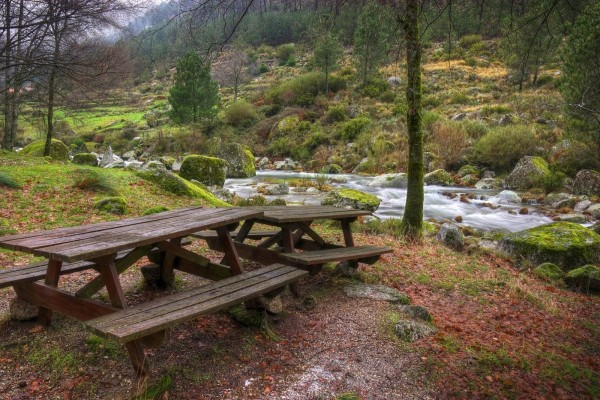 Mesas y bancos junto a un río en un bello entorno natural
