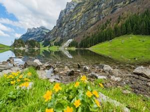 Postal: Magnífico paisaje primaveral en el lago