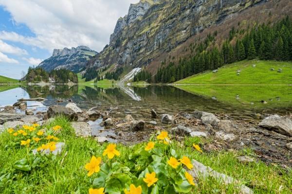 Magnífico paisaje primaveral en el lago