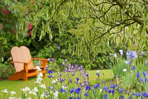 Banco de madera en un bello jardín