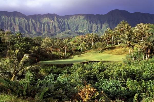 Campo de golf entre palmeras