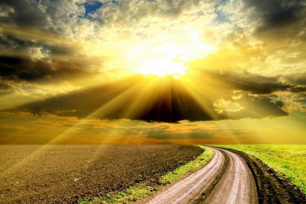 Camino en el campo iluminado por el sol
