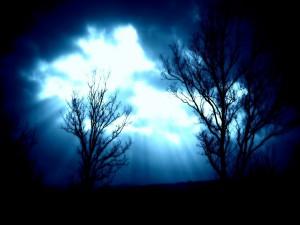 Postal: Intensa luz en el cielo en la oscura noche