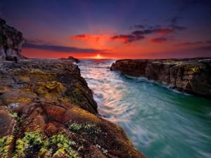 Personas admirando el bello atardecer junto al mar