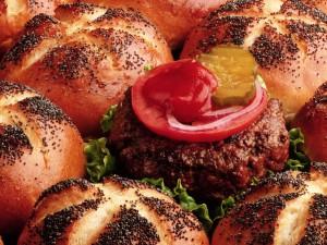 Una hamburguesa entre panes de hamburguesa
