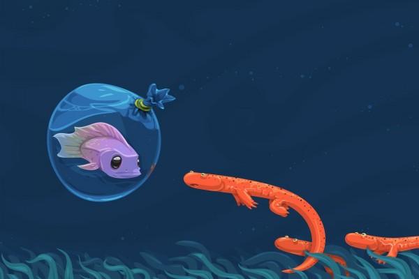 Anfibios sorprendidos de ver un pez dentro de una bolsa